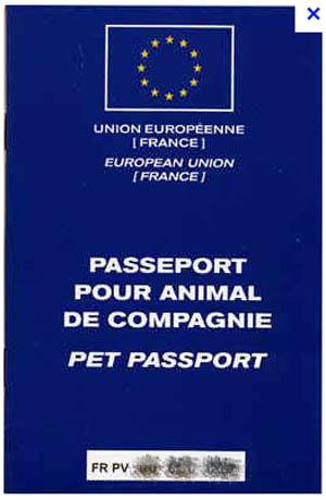 Un exemple de passeport européen pour voyager avec votre chien en Europe